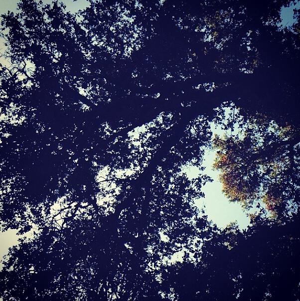 Screen Shot 2014-10-08 at 8.54.02 PM